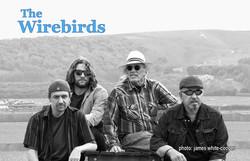 Wirebirds Band