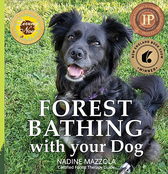 Forest+Bathing+with+Your+Dog.jpg