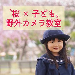 桜正方形.jpg