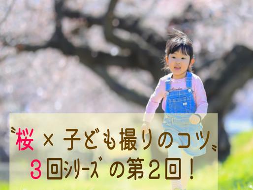 〝桜×子ども撮りのコツ〟3回シリーズの2回目