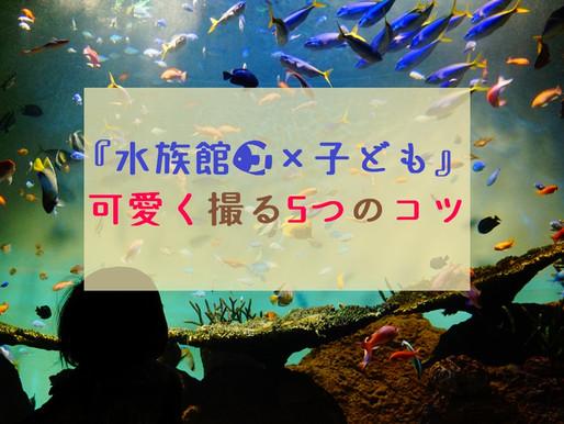 『水族館×子ども』可愛く撮る5つのコツ