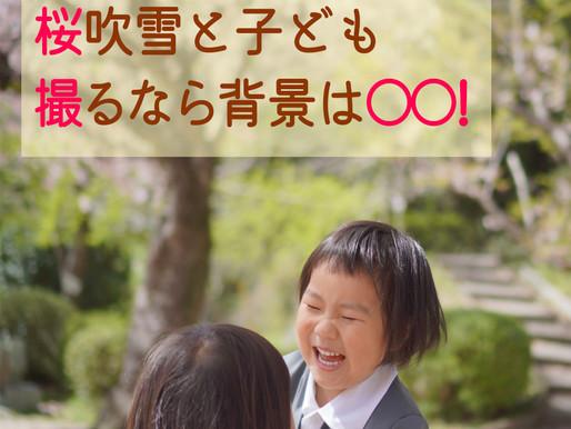 桜吹雪と子どもを撮るなら背景は○○!