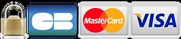 logo visa security.png