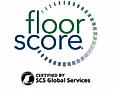 floor score.PNG