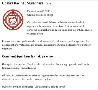 chakra racine.png