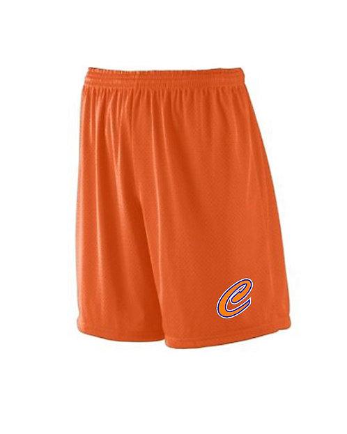 Crush Mesh Shorts