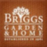 briggs.jpg