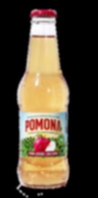 beverage, drink, sparkling apple juice, all natural drink, apple juice