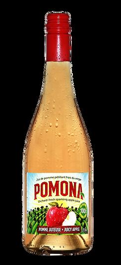 POMONA - 750ml (2).png