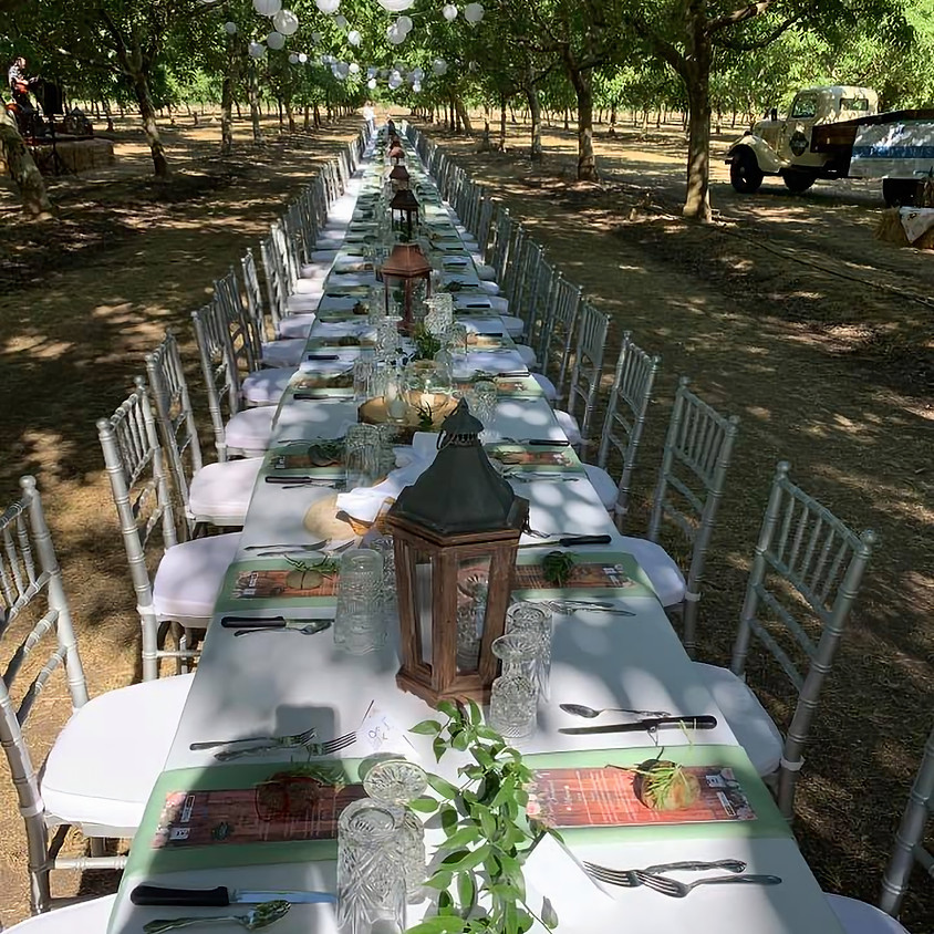 Dinner in the Orchard