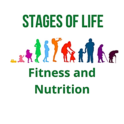 Stages of Life (3).png