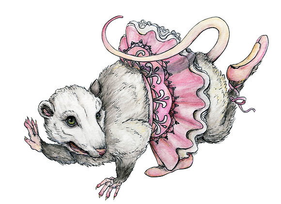'Possum en Pointe Print