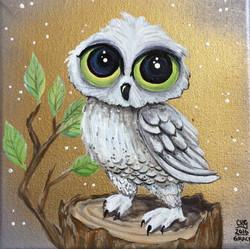 Owl Awaits