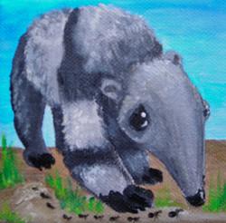 Baby Giant Anteater