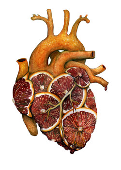 Blood Orange Heart
