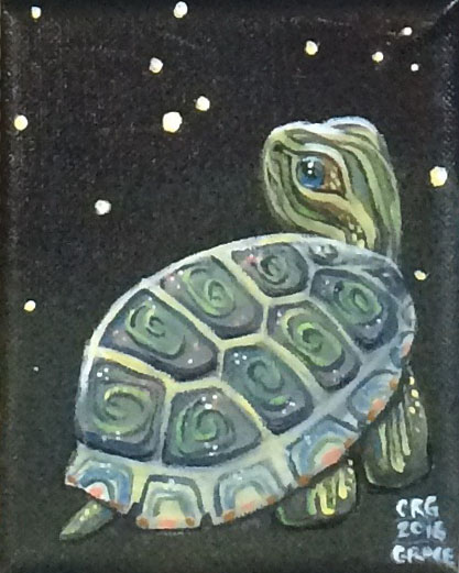 Painted Turtle and Stars