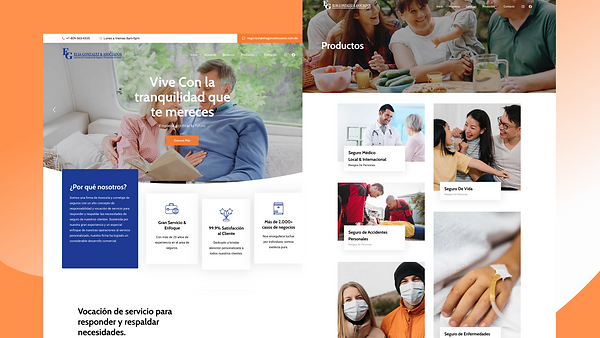 Agency Portfolio 2020 (19).png