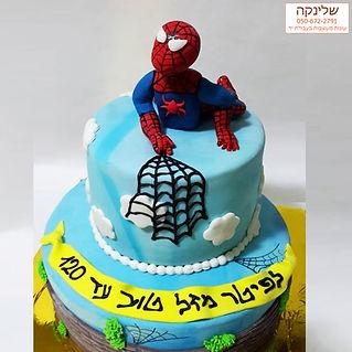 עוגת-ספיידרמן.jpg
