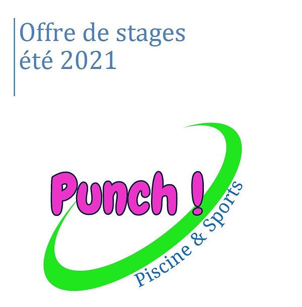 Offre de stage ete 2021.jpg