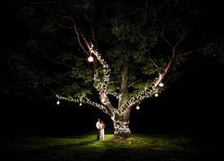 Deepa Renaldo Wedding Teasers-Wedding Teasers-0064_edited
