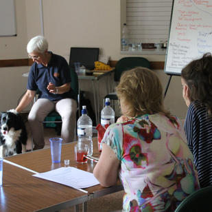 Animal healing workshop for healers