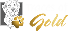 Traces of Gold Logo horizontal 002.png