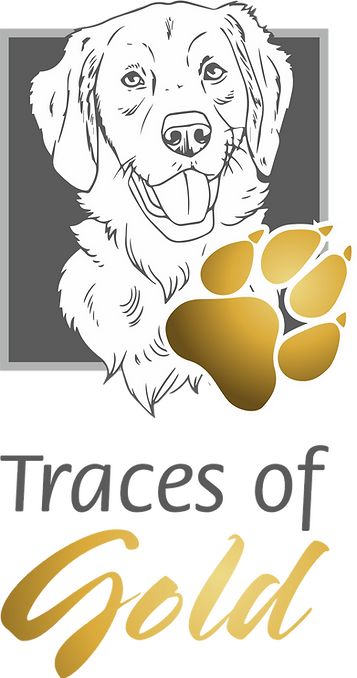 Traces of Gold Logo vertikal 001.png