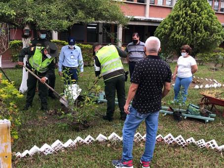 SIEMBRA DE PLANTAS EN NUESTRA INSTITUCIÓN