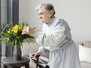 Dieta low carb e o mal de Alzheimer