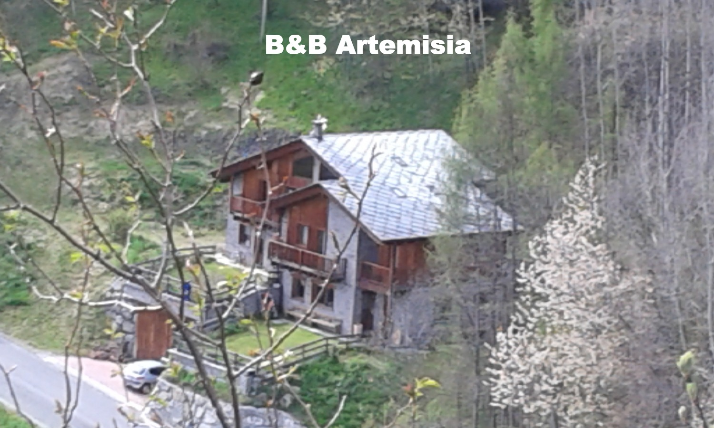 B&B Artemisia