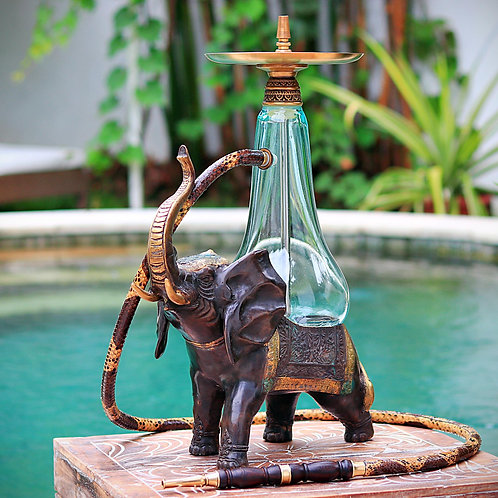 Elephant 101
