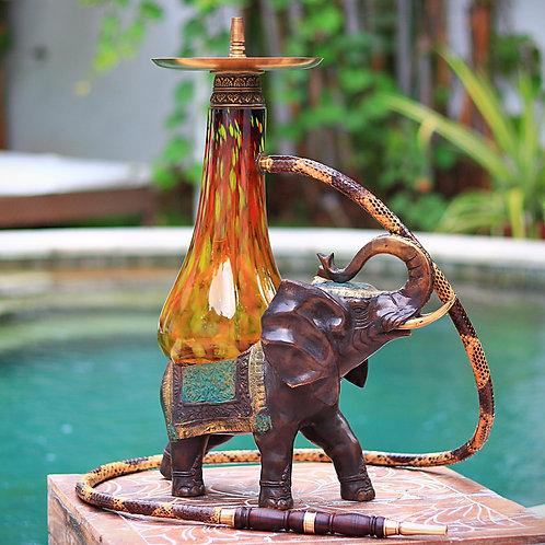 Elephant 102