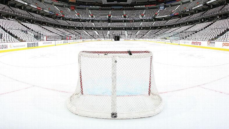 Hockey Backsplash.jpg