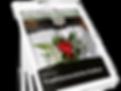 Zeitungen_Stapel_20-1.png