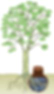 Démo arbre.png