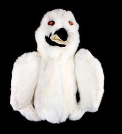 OWL -Snowy