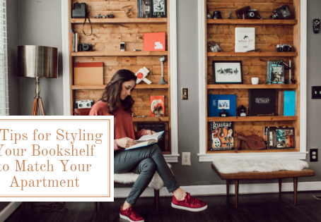 Our 5-Step Process for Styling Your Bookshelf to Match Your Apartment