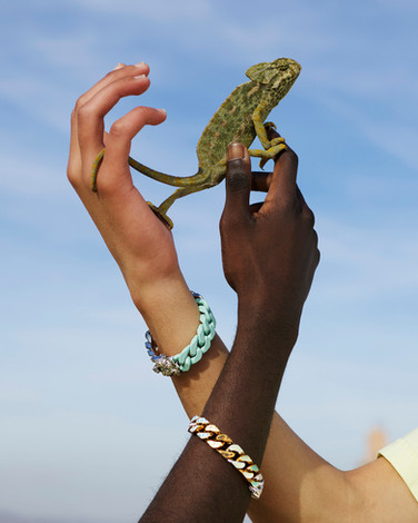Louis Vuitton photography production - Gecko in Footprints campaign