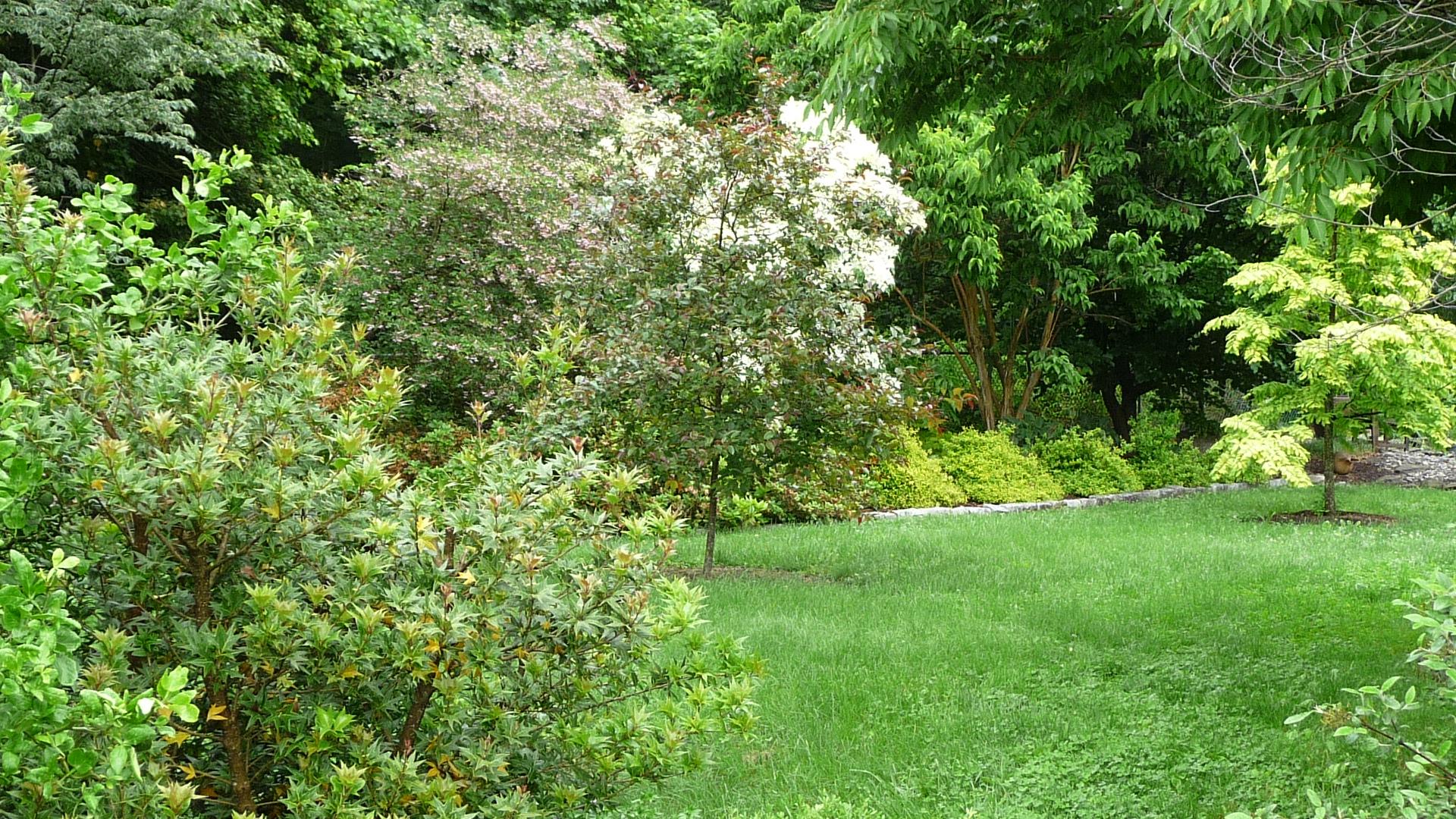 Cairnsgrove 3