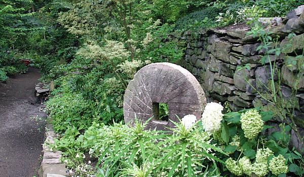 Mill Fleurs 2