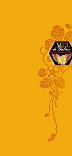 mieldegalicia.org
