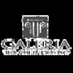 galeriadelcoleccionista.com