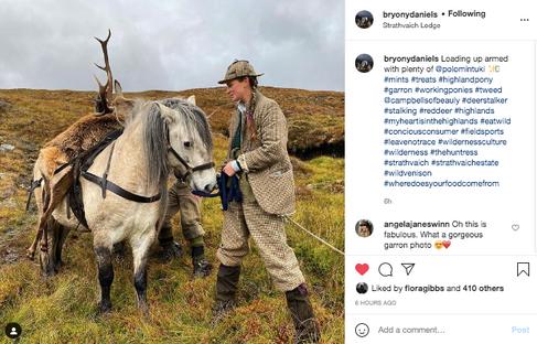 Equestrian Travel Instagram