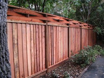 Curved Top Fencing.jpg