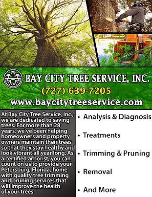 Bay City Tree Service.jpg