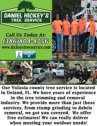 Daniel Hickey's Tree Service LLC.jpg
