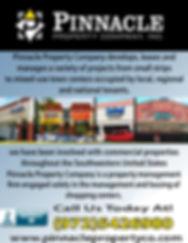 Pinnacle Property Company.jpg