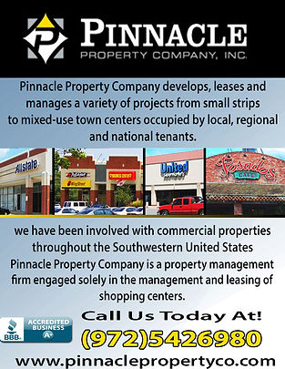 Pinnacle Property Company.jpg