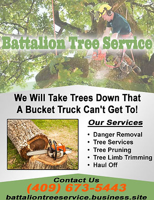 Battalion Tree Service.jpg