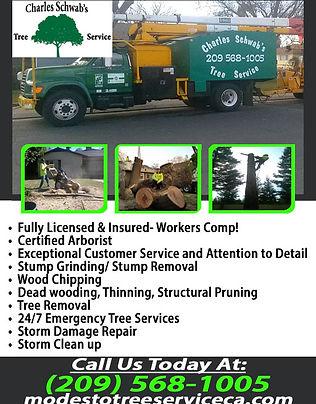 Charles Schwab's Tree Service Inc.jpg